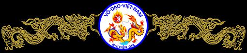 Vo-Dao-Viet-Nam
